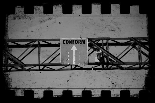 conform musk blog image